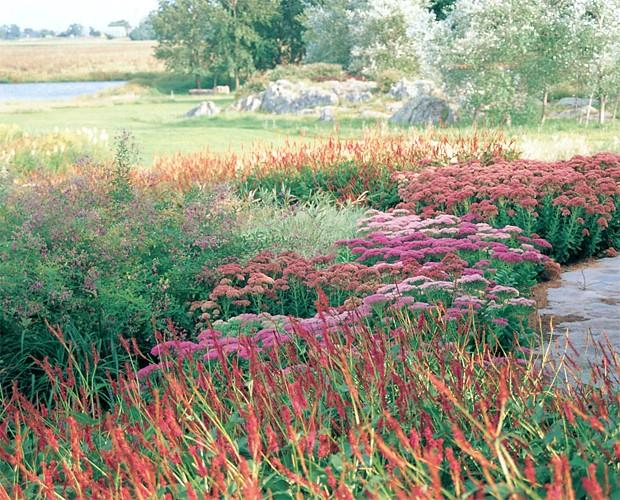El Choique, uno de los paisajistas que convocado fue John Brookes.