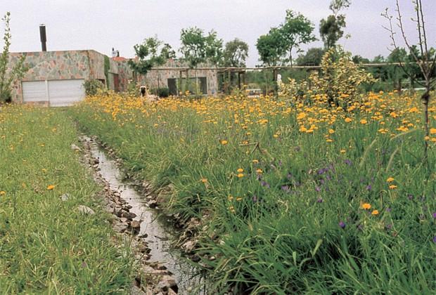 Paisajismo diseñado mediante principios de Permacultura