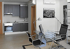 Interior de un loft promocionado como 'despacho profesional', aunque con cocina   Elmundo.es