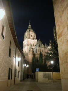 Salamanca, Exterior de las dos catedrales, vistas desde el sur