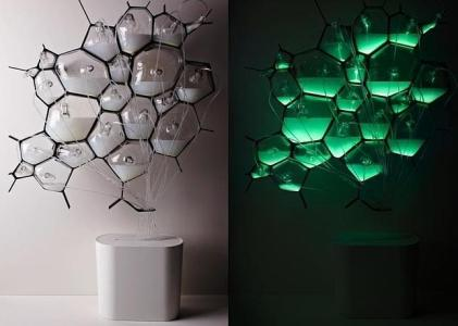 Philips - El líquido de aspecto lechoso en las «células» se convierte en fuente de luz  - ABC.es