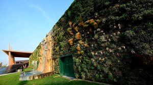 The largest vertical garden in the world on a shopping mall facade in the town of Rozzano, near Milan / AFP - www.news.com.au