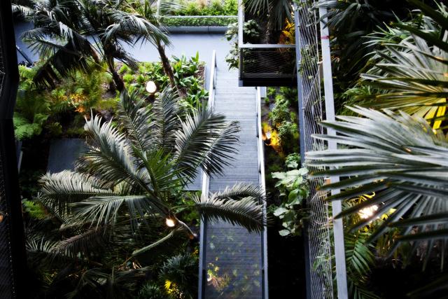 Jardín Vertical en el Atrio del Renaissance Barcelona Fira Hotel - Foto Cortesía HC Fira (Prensa)